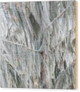 Natures Drapery At Okefenokee Swamp Wood Print