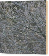 Natures Fairy Lights Wood Print
