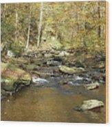 Nature's Finest 5 - Ricketts Glen Wood Print