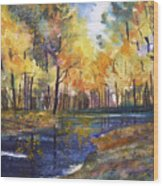 Nature's Glory Wood Print