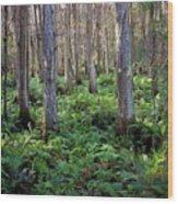 Nature's Heartbeat Wood Print