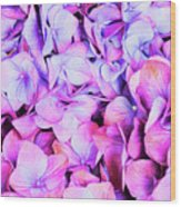 Natures Interpretation Of Butterflies Wood Print