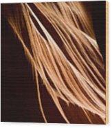 Natures Lines Wood Print