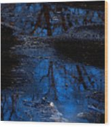 Natures Looking Glass Wood Print