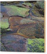 Nature's Mosaic No. 1 Wood Print