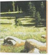 Nature's Pathway Wood Print