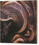 Natures Sculpture Wood Print
