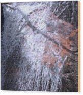 Nature's Shower Head Wood Print