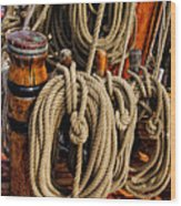 Nautical Knots 17 Oil Wood Print