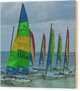 Nautical Travel Wood Print