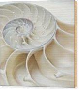 Nautilus 2by3 Wood Print