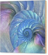 Nautilus Shells Blue And Purple Wood Print by Gill Billington