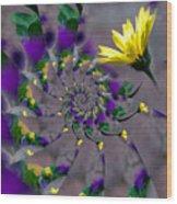 Nautilus Swirls Wood Print