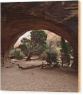 Navajo Arch Wood Print
