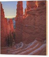 Navajo Loop Wood Print