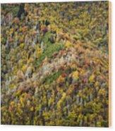 Nc Fall Foliage 0543 Wood Print