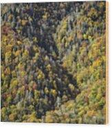 Nc Fall Foliage 0544 Wood Print