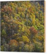 Nc Fall Foliage 0559 Wood Print