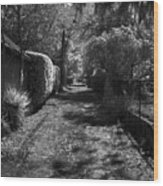 Ne Portland Alley Wood Print