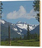 Near Sparwood British Columbia  Wood Print