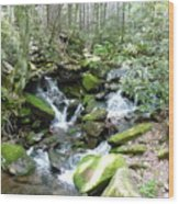 Near The Grotto Wood Print