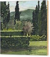 Near Villa Mandri Gardens Wood Print
