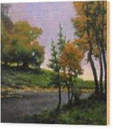 Near Woodland Wood Print