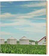 Nebraska Corn Wood Print