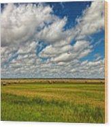 Nebraska Wheat Fields Wood Print