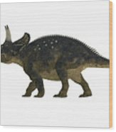 Nedoceratops Side Profile Wood Print