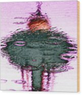 Needle In A Raindrop Stack 2 Wood Print