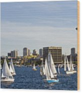 Needle Sails By Wood Print