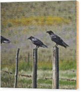 Neighborhood Watch Crows Wood Print