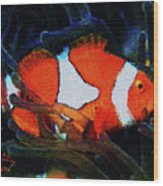 Nemo's Marlin Wood Print