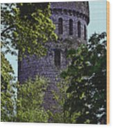 Nenagh Castle Ireland Wood Print