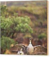 Maui Hawaii Haleakala National Park Nene Hawaiian State Bird Wood Print