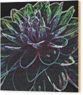 Neon Garden Dahlia I Wood Print