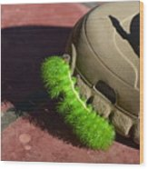 Neon Geen Caterpillar Loves Crocs Wood Print