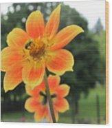 Neon Orange Flower Wood Print
