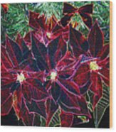 Neon Poinsettias Wood Print