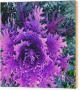 Neon Purple Wood Print