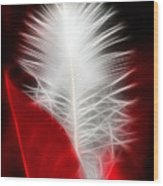 Neon Red Feather Wood Print