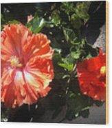 Neon-red Hibiscus Flowers 6-17 Wood Print