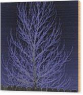 Neon Tree Wood Print