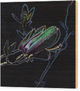 Neon Tulip Tree 5090 Wood Print