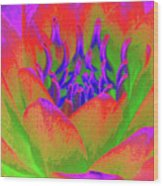 Neon Water Lily - Photopower 3370 Wood Print