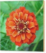 Nepal Orange 2 Wood Print