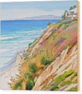 Neptune's View Leucadia California Wood Print