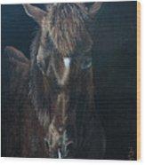 Nervous Colt  Milltown Fair Wood Print