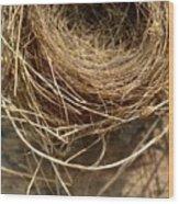 Nest 913 Wood Print